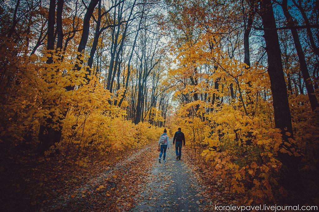 Autumn-294