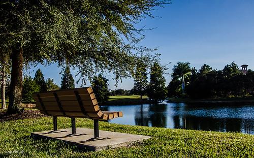 lake bench landscape florida bestshot lakewoodranch nikond7000 afsnikkor18105mm13556g bgdl lightroom5 captureyour365 cy365 flickrlounge