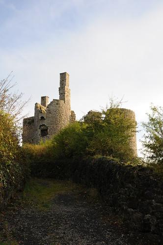 Ballinafad Castle
