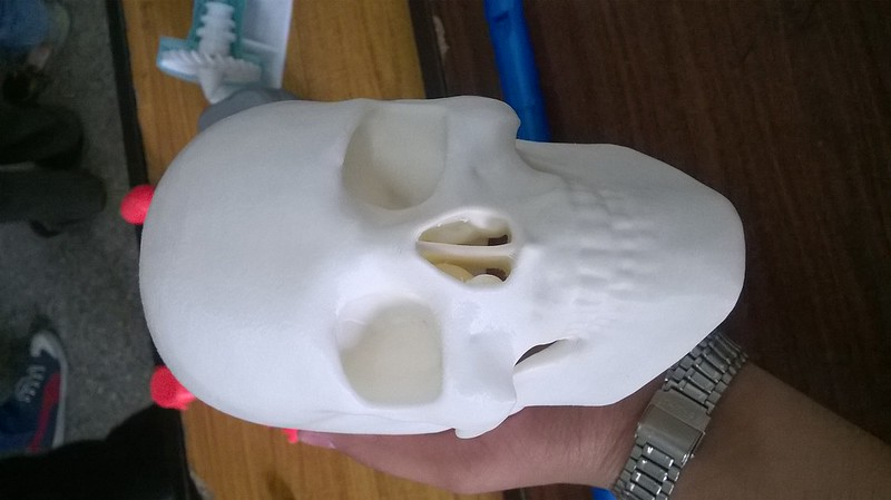 3D Printed real scan