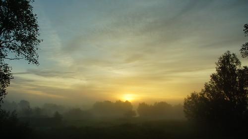 sky oktober sun mist nature water netherlands dutch fog sunrise river landscape licht sony w nederland natuur wolken sigma lucht dag zon dauw ochtend landschap uiterwaarden waal wolk rivier zonsopkomst ochtendmist daglicht wolkenlucht weatherphotography sigma18250mm nieuwaal waterenvirons waallandschap