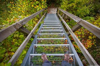 Staircase to Autumn