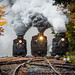 Cass Scenic Railroad by Scriptunas Images