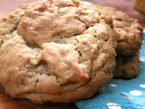 Mrs. Fields Secrets Oatmeal Maple Cookies