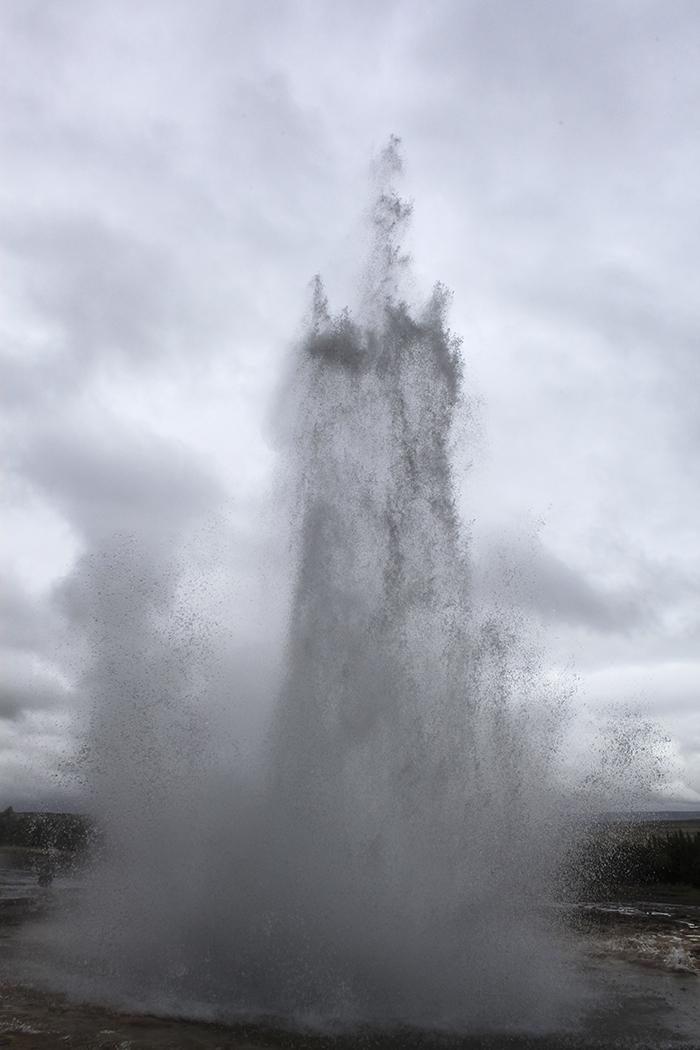 Iceland_Spiegeleule_August2014 066