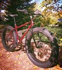Dylan's Surly Pugsley