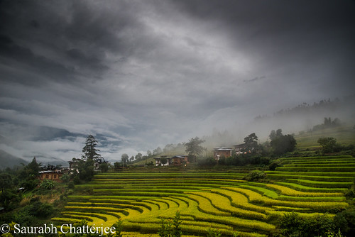 landscape bhutan farmland punakha terracefarming siaphotography saurabhchatterjee