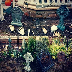 One week! So I put the headstones out. #Halloween #100happydays day 74
