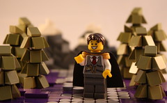 Welcome to Pick-a-Brick Land!