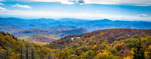 autumn trees usa mountain mountains fall landscape nc scenery fallcolor unitedstates fallcolors scenic northcarolina linville fallfoliage mountainside blueridgemountains treescape blueridgeparkway scenics blueridge mountainous leafpeeping linncoveviaduct linncove