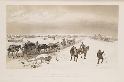 horses soldiers carts troops wagons crimeanwar militarycamps packtrains belltents