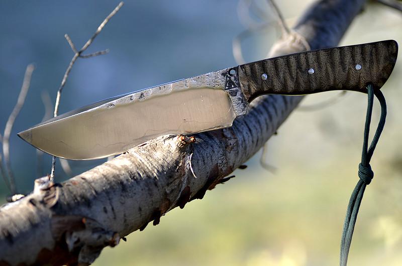 Des traces de couteaux dans les bois 15481456719_0f3ed09622_b