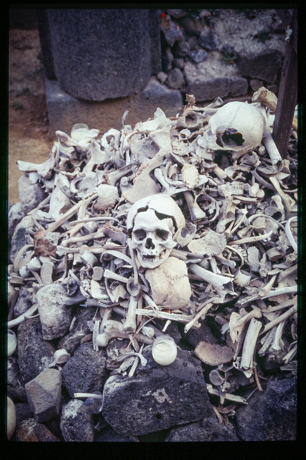 Fête des morts à Mexico - Crânes et squelettes humains