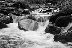 white water in mono