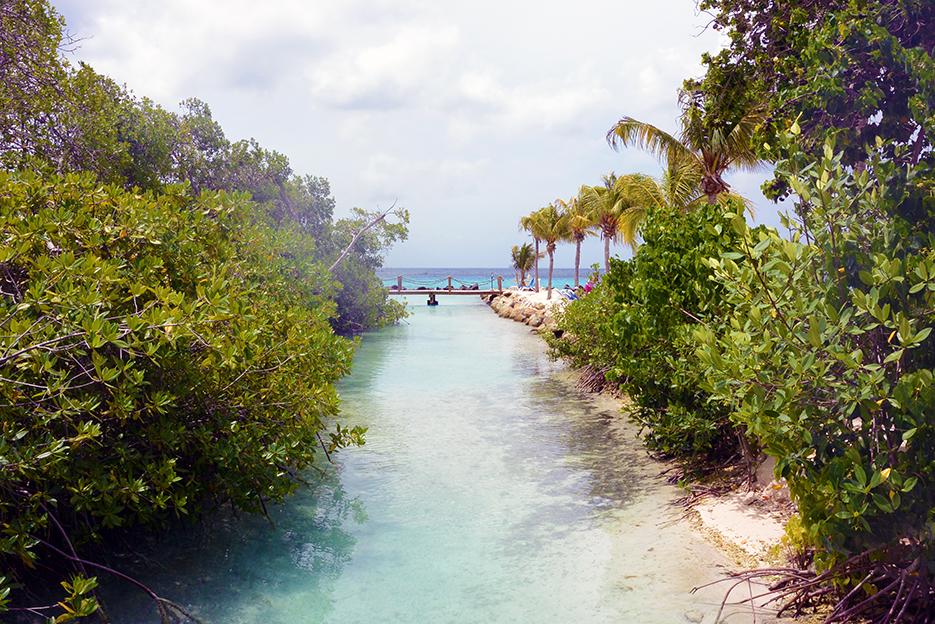 POSE-private-island-3