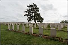 Noyelles sur Mer 80 : (cimetière chinois de Nolette )