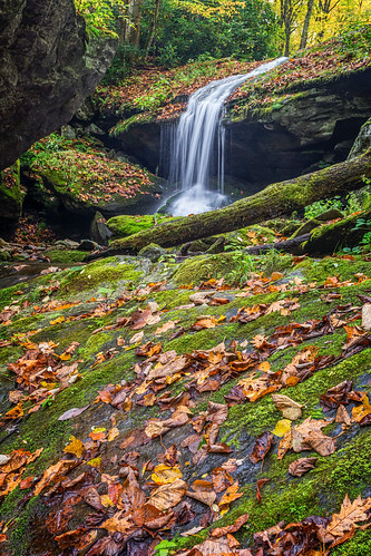 Otter Falls [Explored]