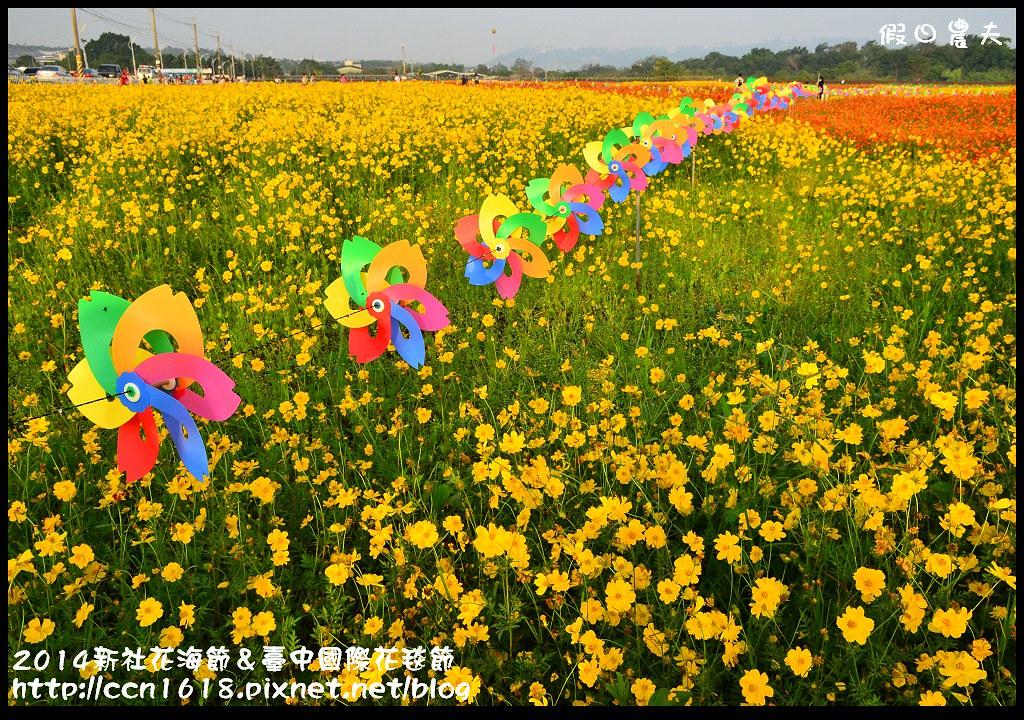 2014新社花海節&臺中國際花毯節DSC_4864