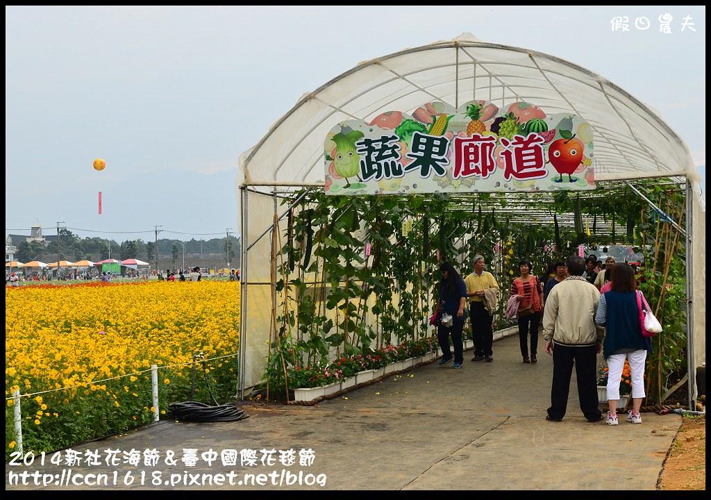 2014新社花海節&臺中國際花毯節DSC_4944