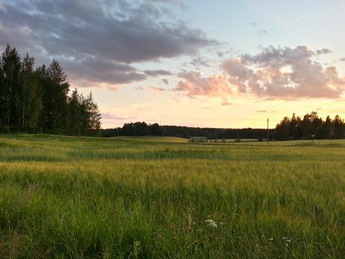 sunset summer nature beautiful field suomi finland evening countryside finnland sundown dusk country finlandia フィンランド finlande finlândia finnország finlanda finlàndia финляндия finnishsummer finnlando فنلندا