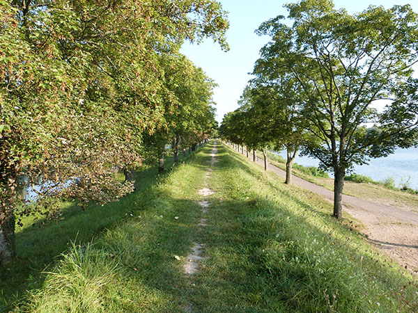 chemin bords de loire