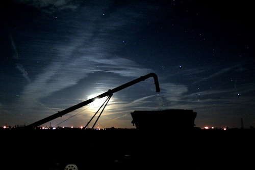 290/365 Auger In The Moonlight