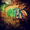 Big spray paint piece on a trailer with plants nearby. #ondragontime #fall #leaves #urbex #exploring #grafitti #art #painting #minneapolis #minnesota