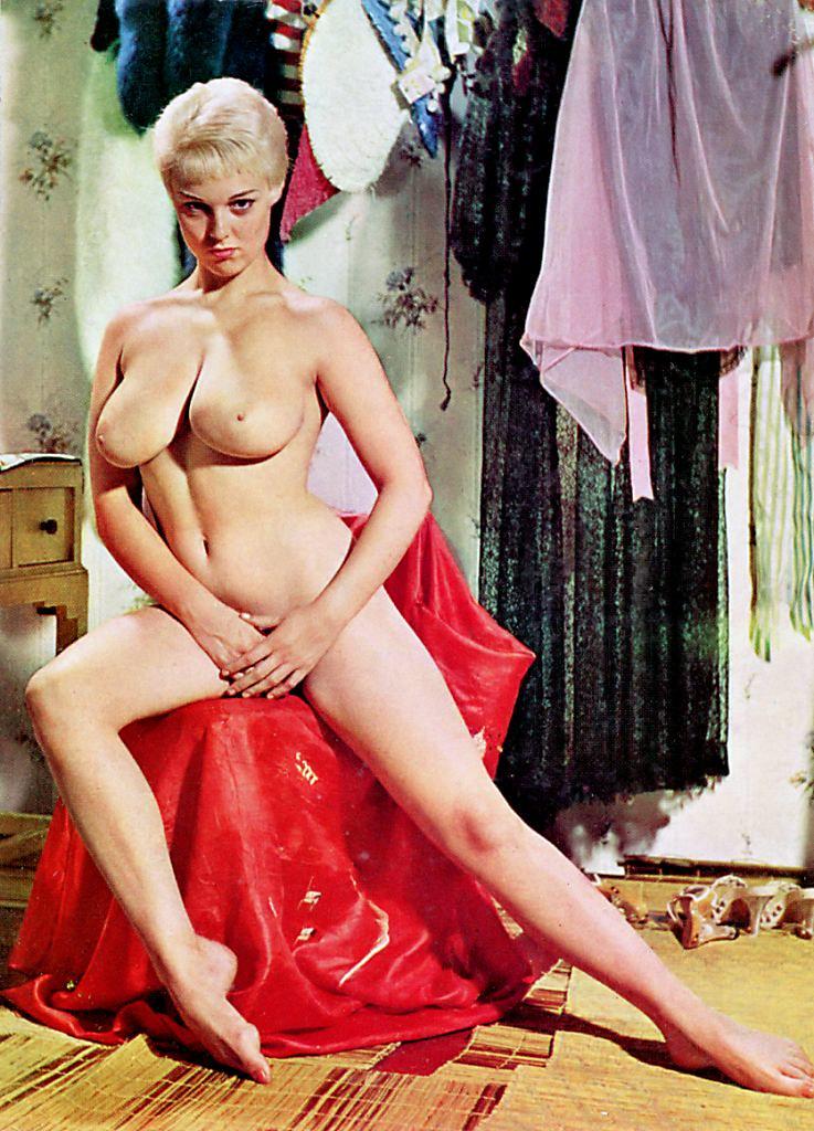 Vintage retro nude centerfolds