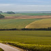 Small photo of Paysage Chaource