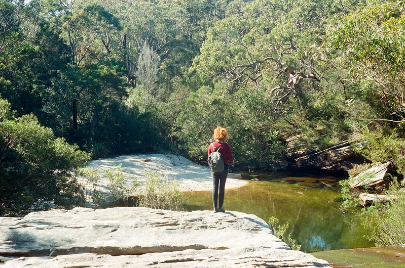 A walk in the Royal National Park, NSW Australia