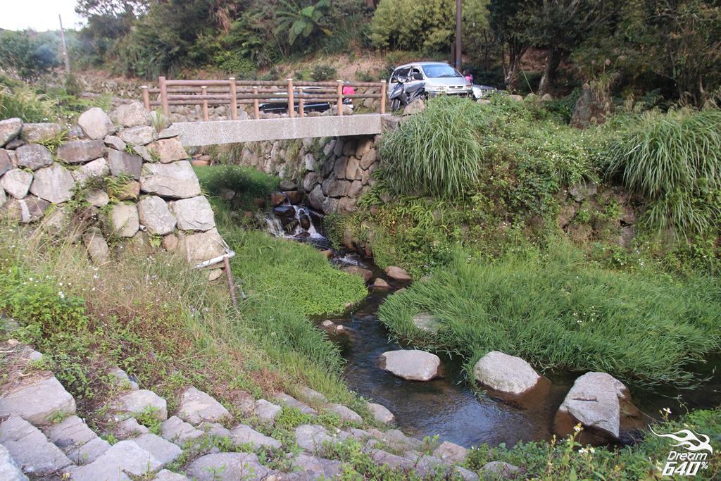 竹子湖青楓步道31