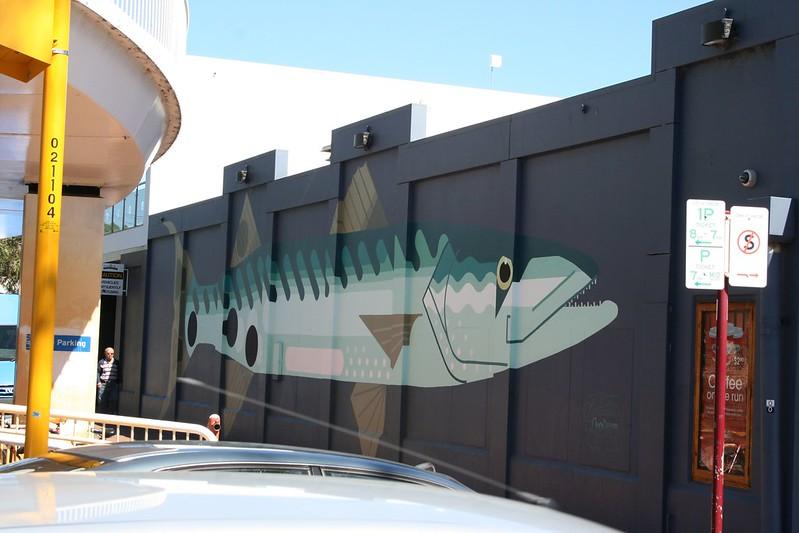 Amok Fish