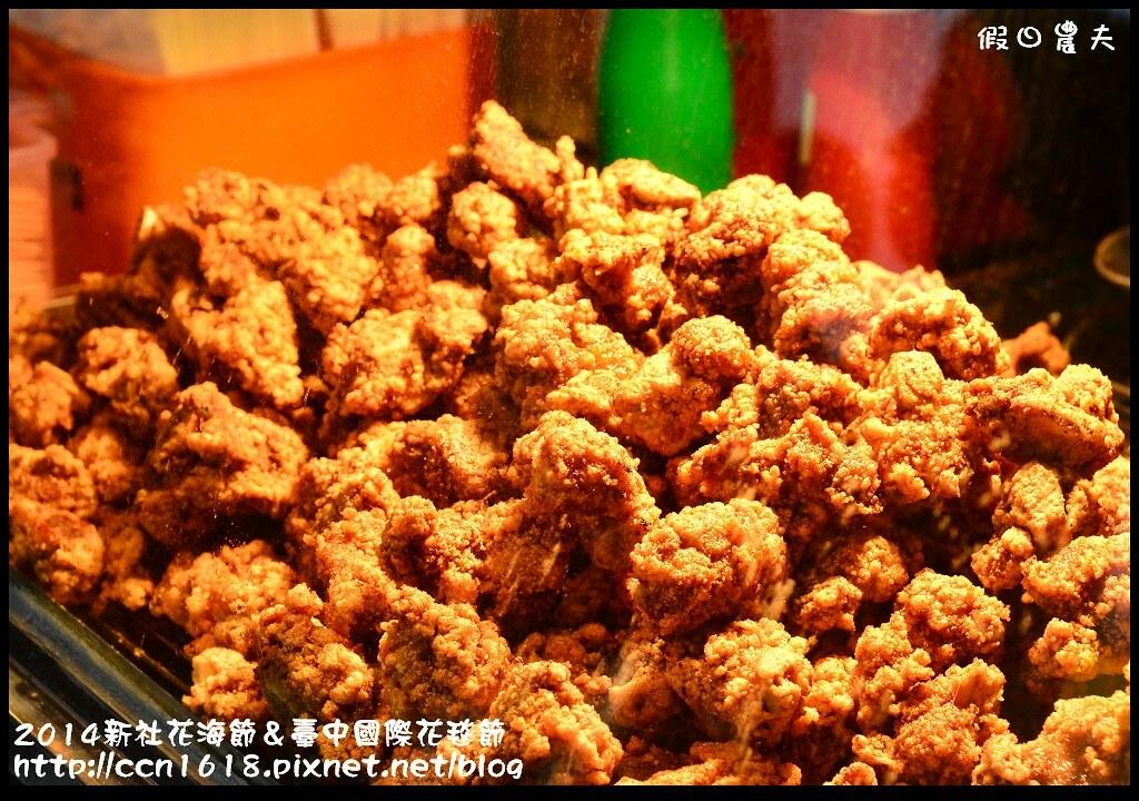 2014新社花海節&臺中國際花毯節DSC_5136
