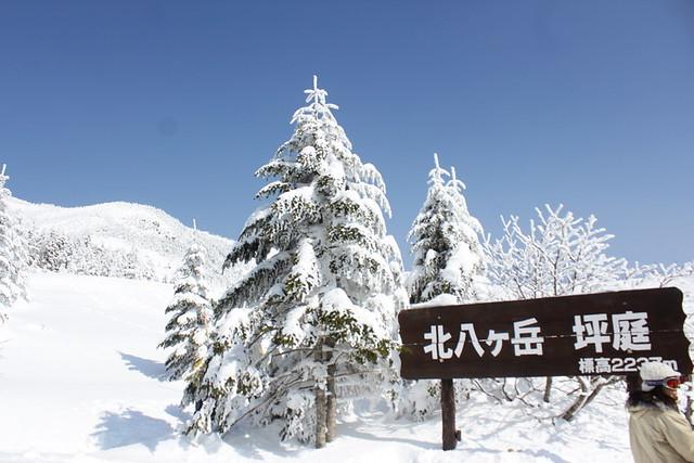 2014-03-09_00012_北横岳