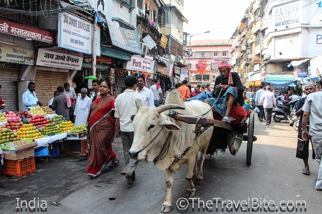 India-119