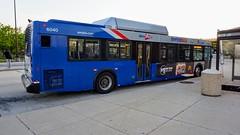 WMATA Metrobus 2006 DE40LFR #6040