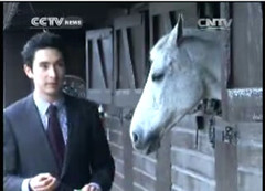 Alex in CCTV News (English) Oriental Daily Programme for Chinese New Year Broadcast 1/2/2014