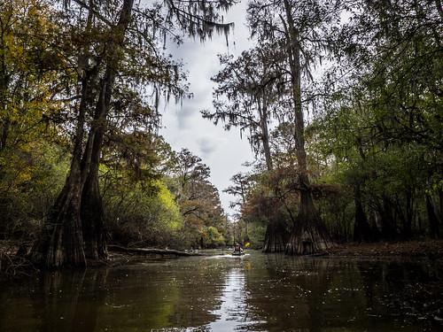 Savannah River from Stokes Bluff with LCU Nov 7, 2014, 4-18 PM Nov 8, 2014, 11-022