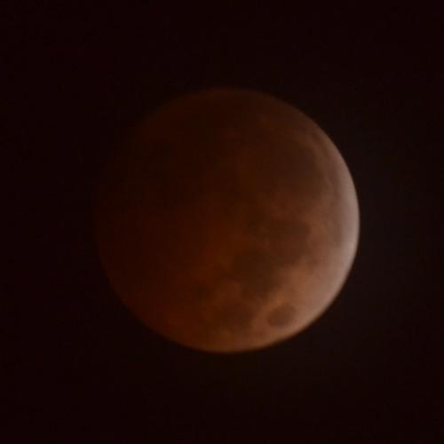 Full Moon 7