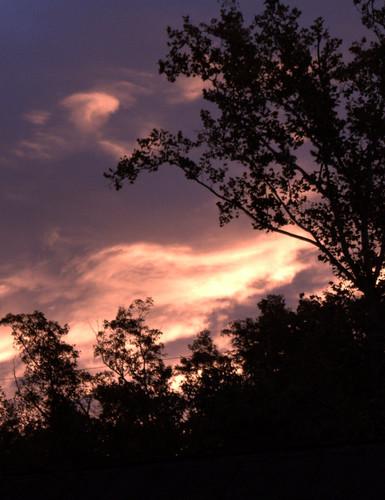 trees colors skyline clouds sunrise canon rebel westvirginia t5