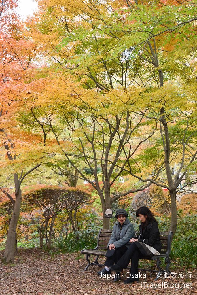 大阪赏枫 万博纪念公园 红叶庭园 06