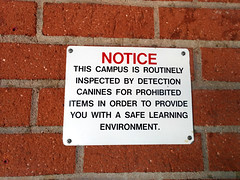 Campus inspected by drug-sniffing dogs, Rosemont Middle School, La Crescenta, Los Angeles, California, USA