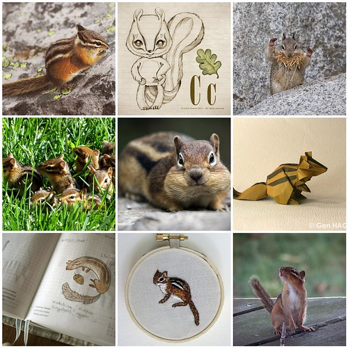 Friday Funspiration: chipmunk love