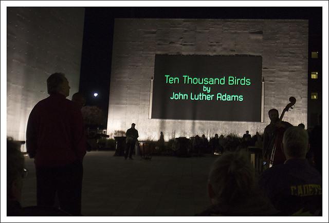 10,000 Birds11