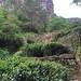 Paysage des montagnes rocheuses de Wuyishan