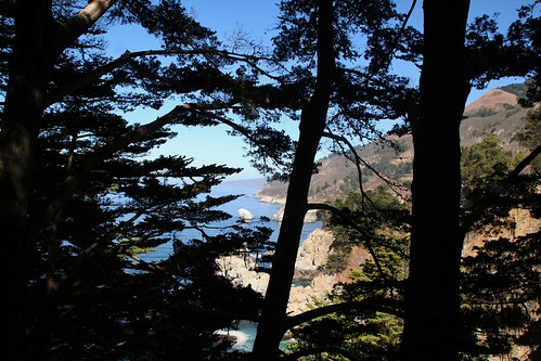 Bluffs through the Trees