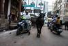 Varanasi blended traffic