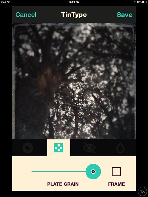 All Photos-5574