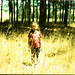 Violeta del bosque by Nina Across the Universe