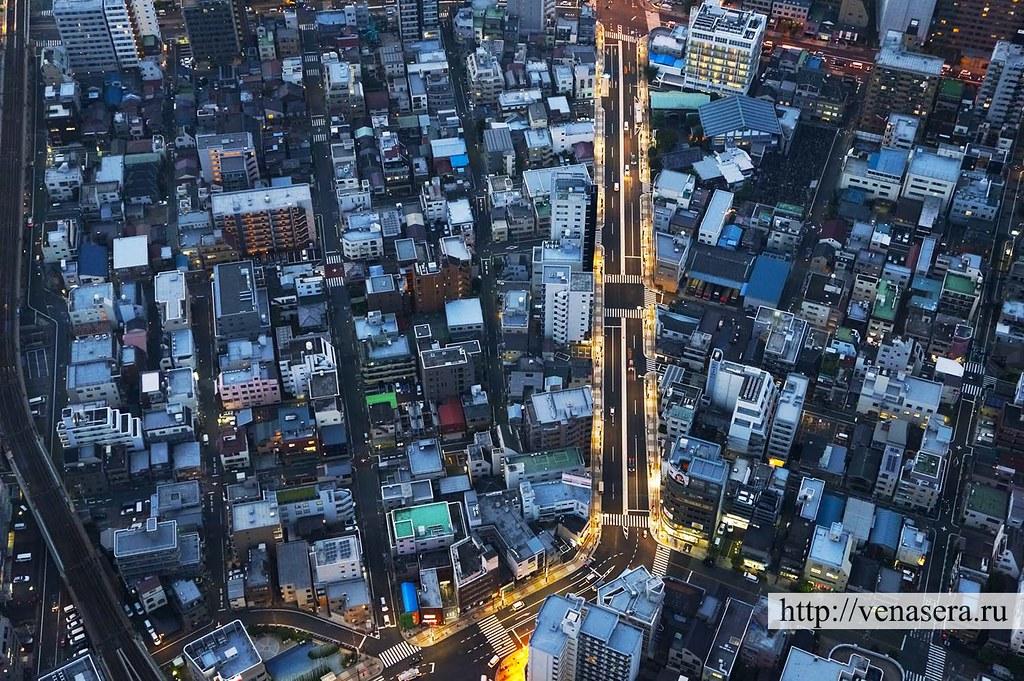 Tokyo Sky Tree View